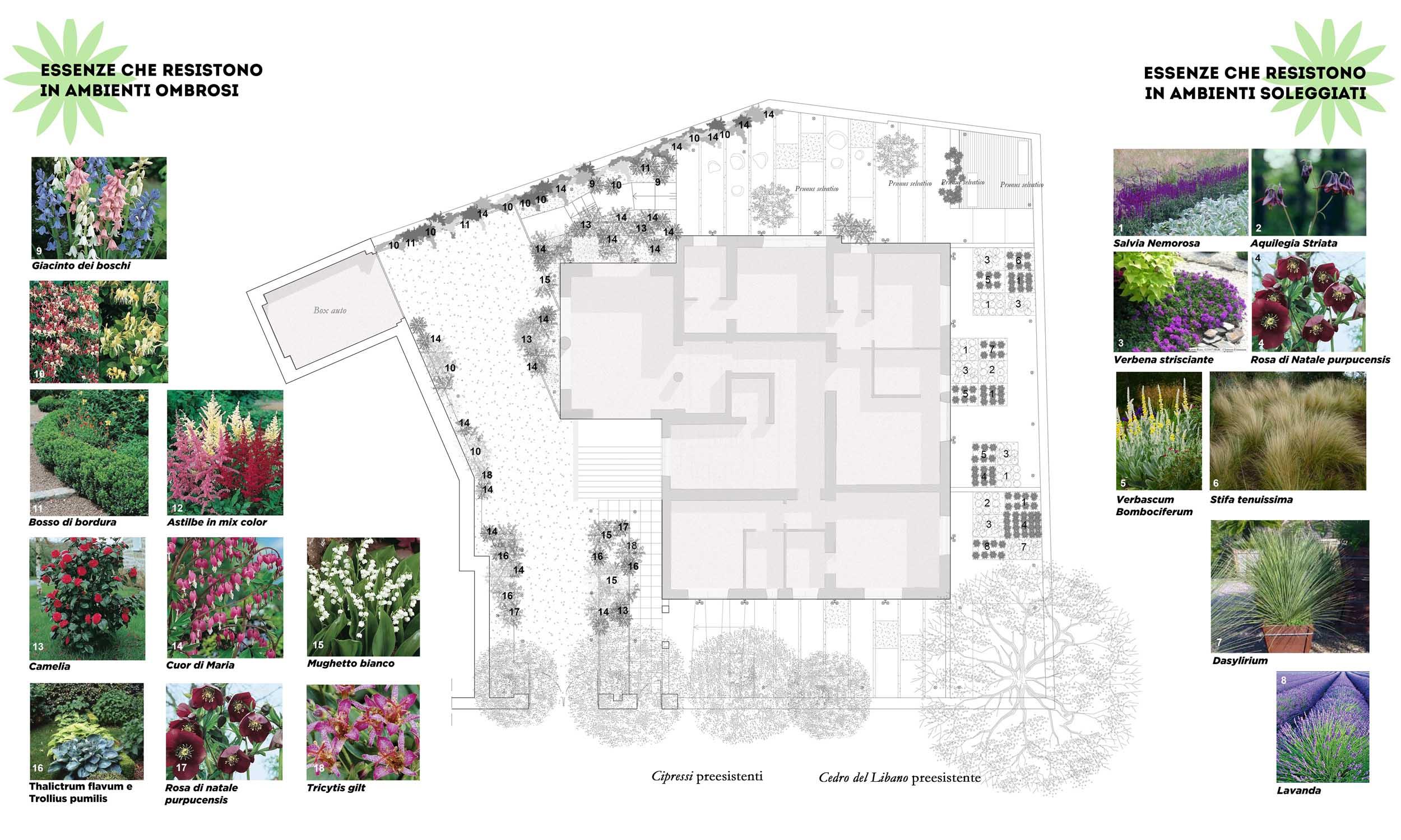 realizzare-il-giardino-dei-sogni-studio-architettura-roma-forniti3